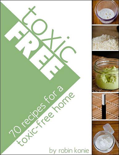 Toxic-Free by Robin Konie