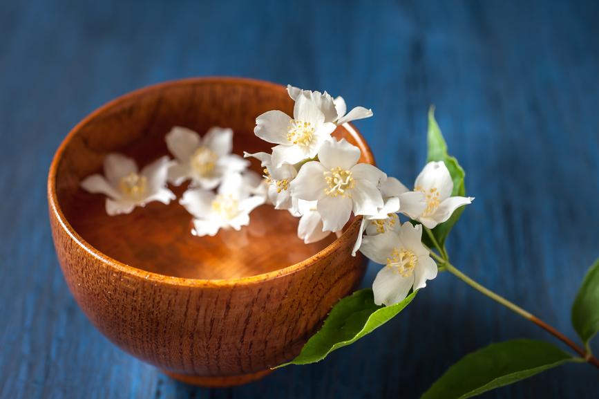 Flower Essences 101