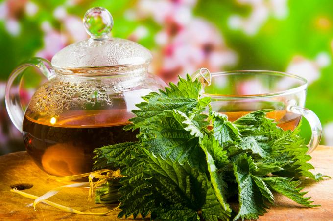 Herbal Powerhouse Healing Tea - Nettle & Raspberry Leaf